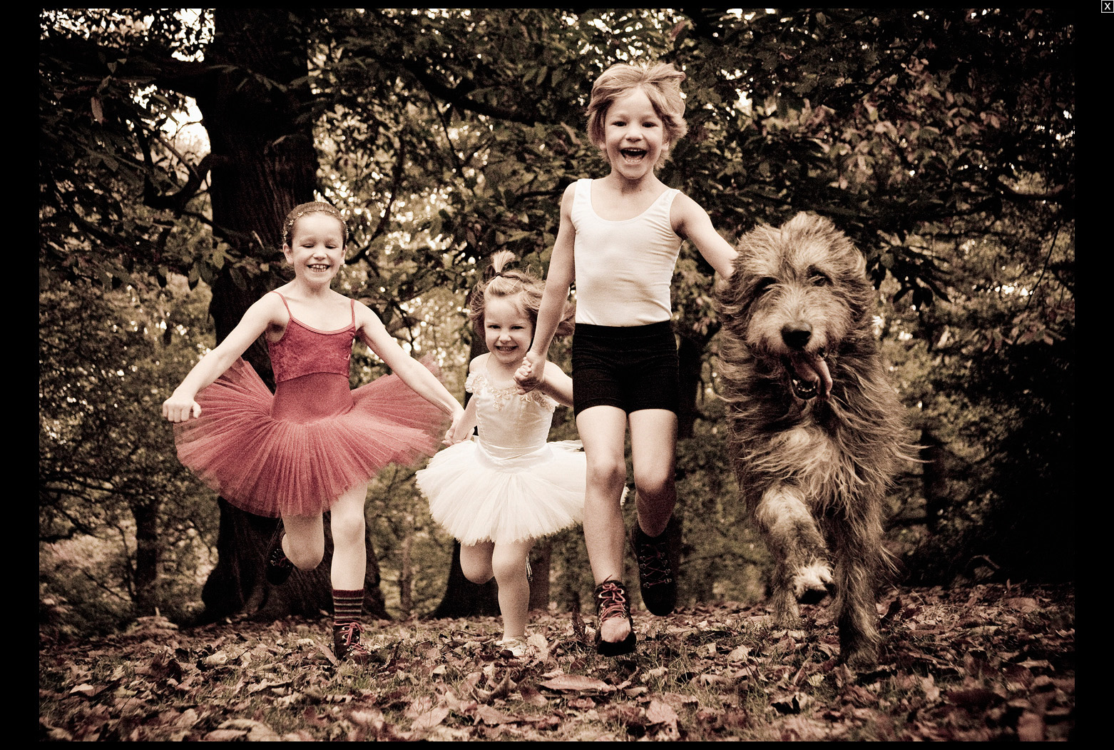Lilly, Pani, Bear & Harris