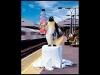 017-tango-clear-penguin_0