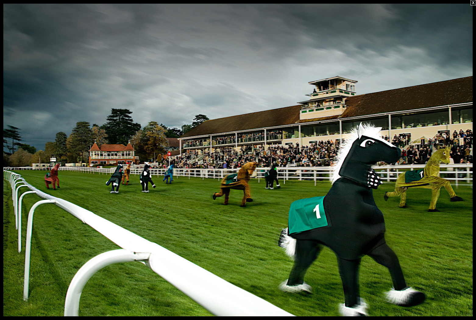 World's Fastest Pantomime Horse Race