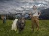 Final Goat_-221b